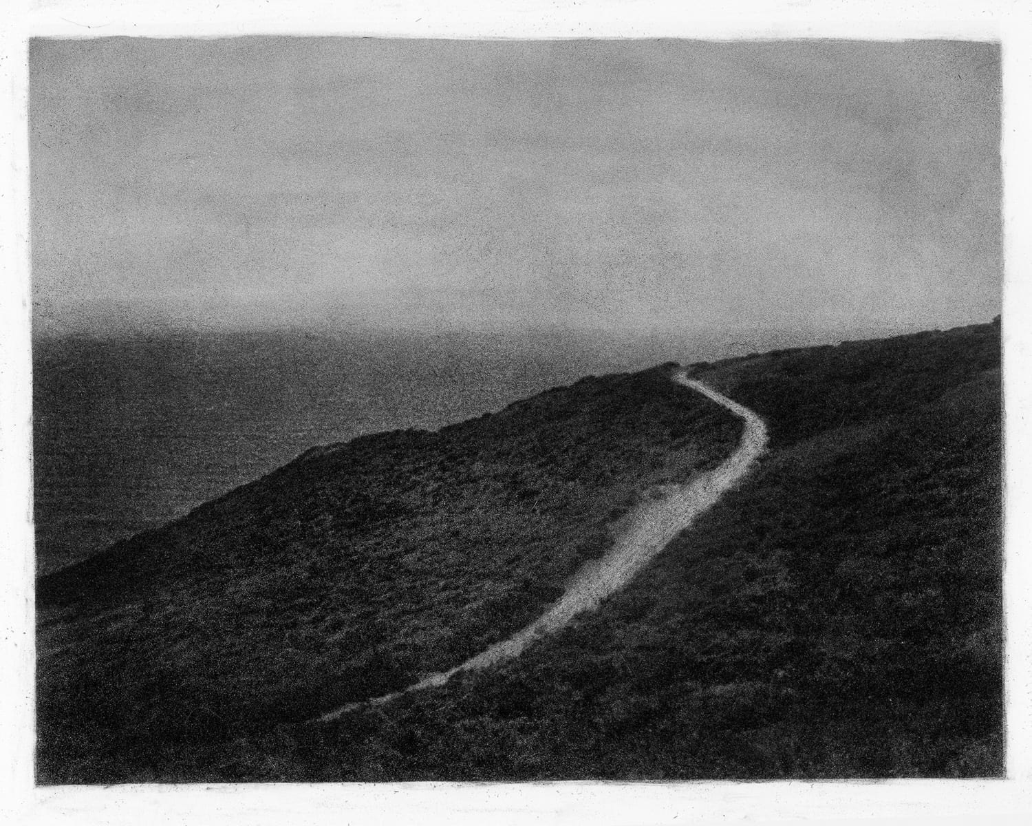 """Marin Headlands Trail 02,"" 2016. Bromoil"