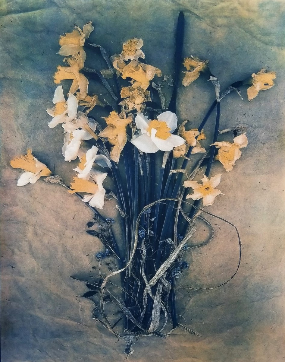 """Daffodils & Forget-Me-Nots, from The Old Garden series,"" 2019. Tri-color Gum Bichromate over Cyanotype"