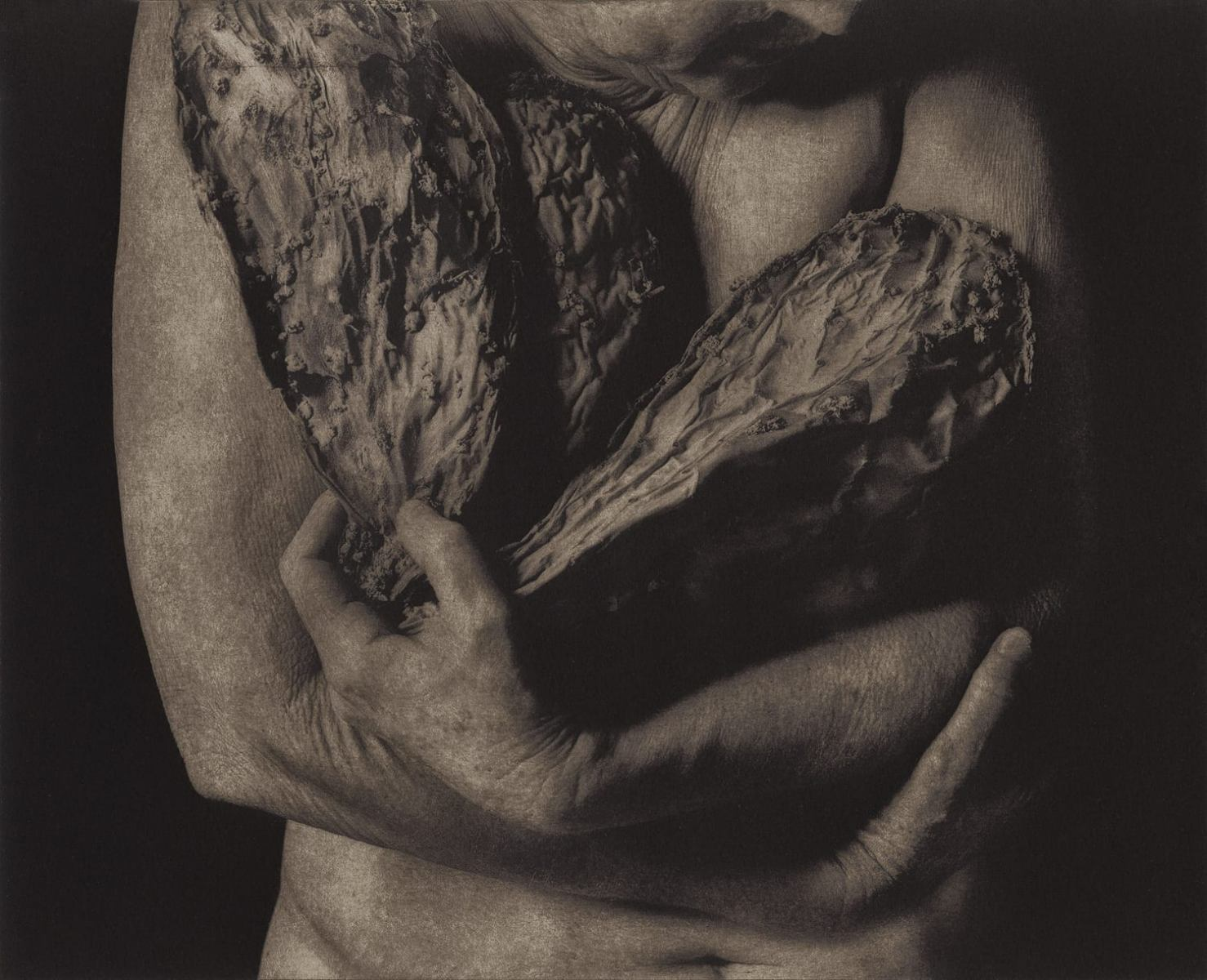 """Age & Seduction: Remnants 202,"" 2015. Photopolymer Gravure with water based inks on BFK paper"