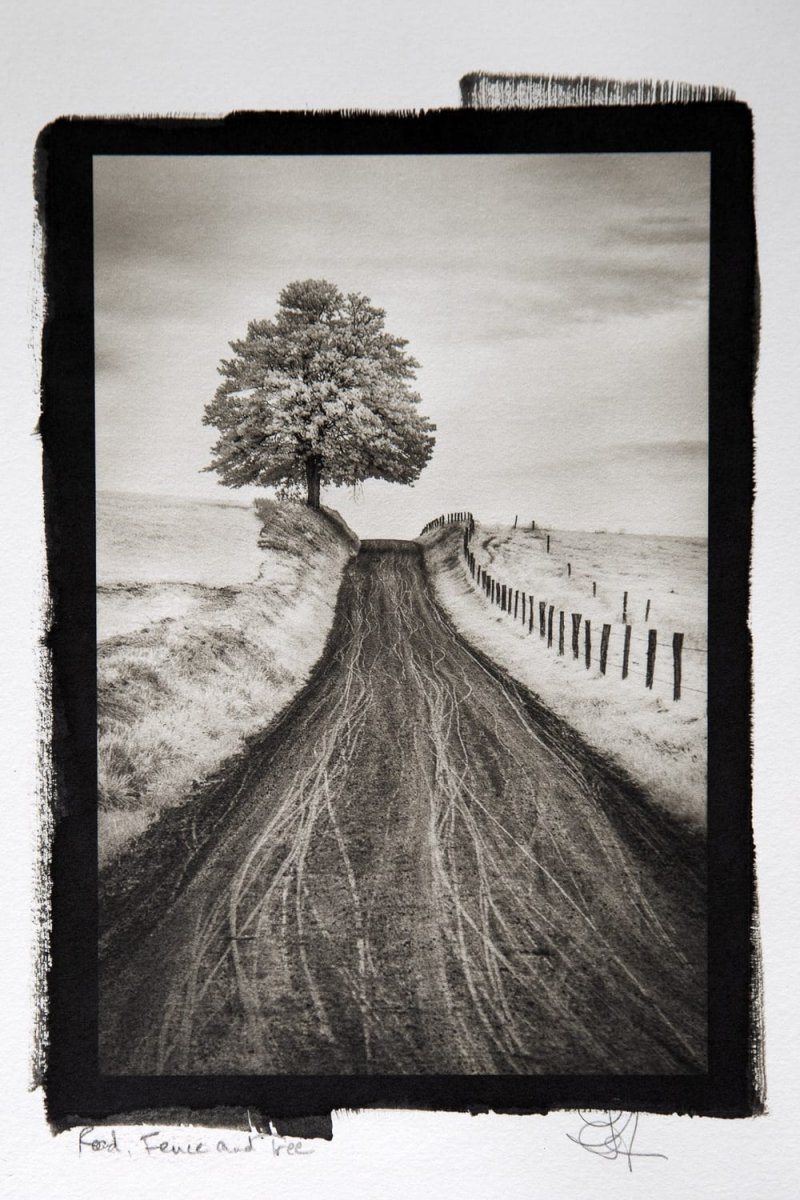 """Road, Fence and Tree,"" 2018. Platinum Palladium"