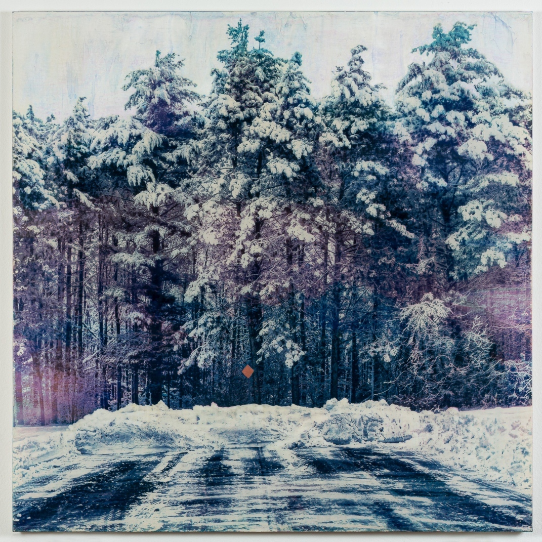 """""""as far as she goes"""", 2020. Multi-layer Gum Bichromate on traditional rabbit-skin glue gesso hydrotech panel."""
