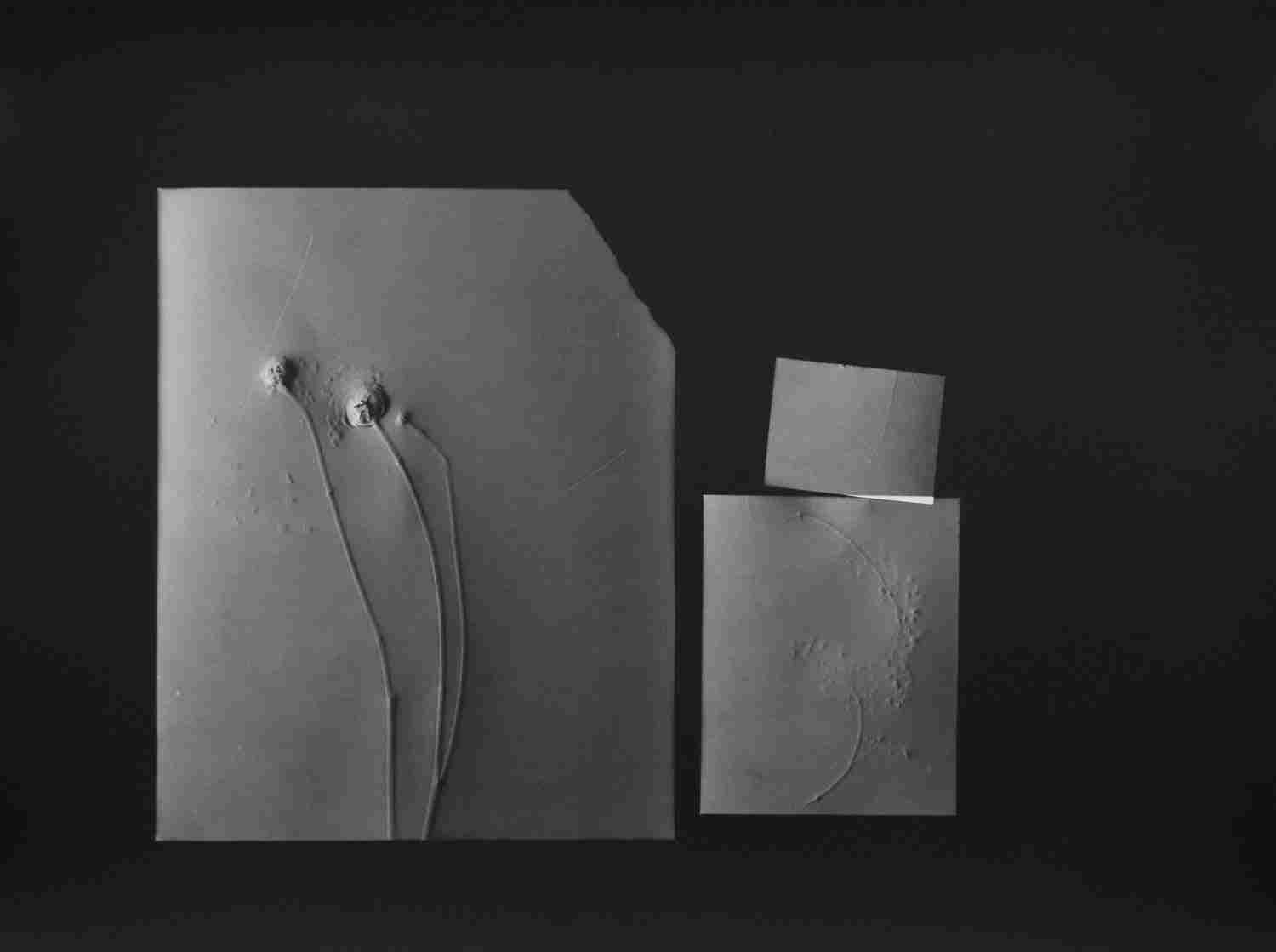 """""""Aide memoire I,"""" 2018. Unique silver gelatin print. From the series """"Fixing a Shadow"""""""
