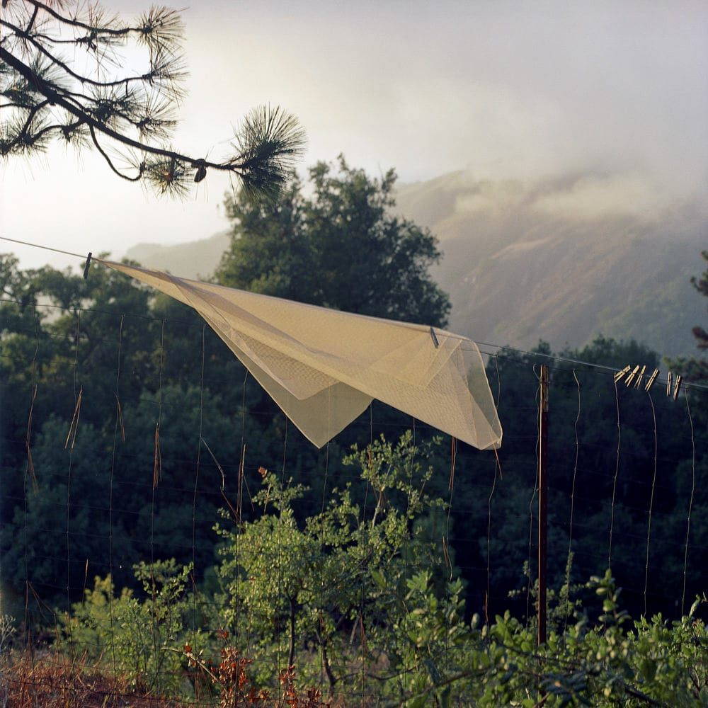 """Washing Line, Big Sur, CA"" Photo © Lucy Goodhart 