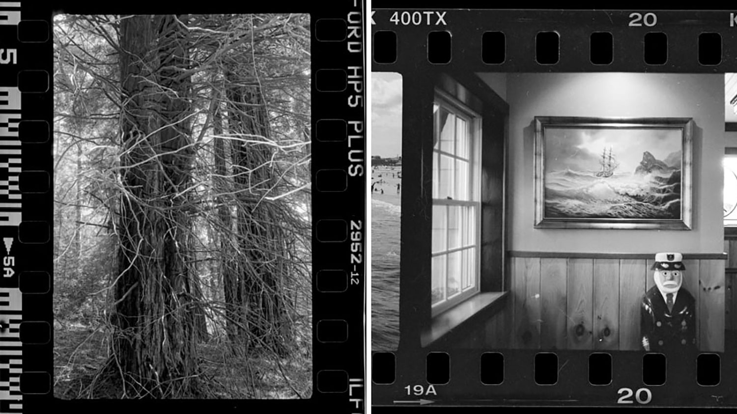 introductory to black and white darkroom workshop