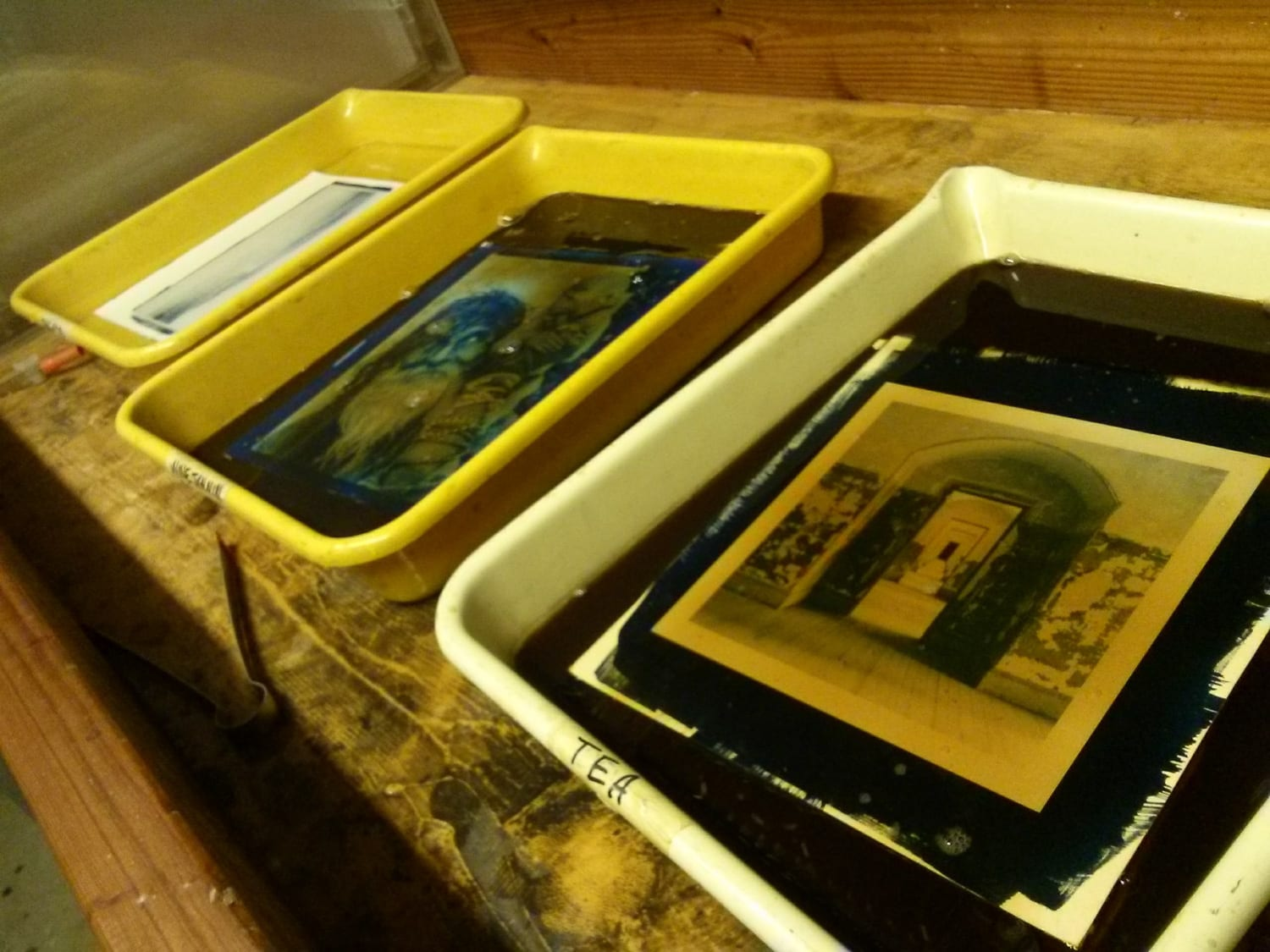 Intro to Cyanotype Printing Workshop at The Image Flow
