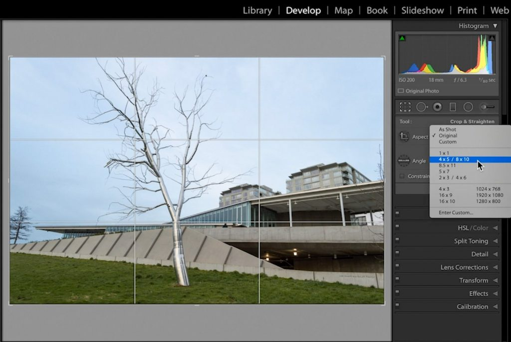Lightroom-Cropping-and-Image-Resolution-04-4x5-8x10-ratio