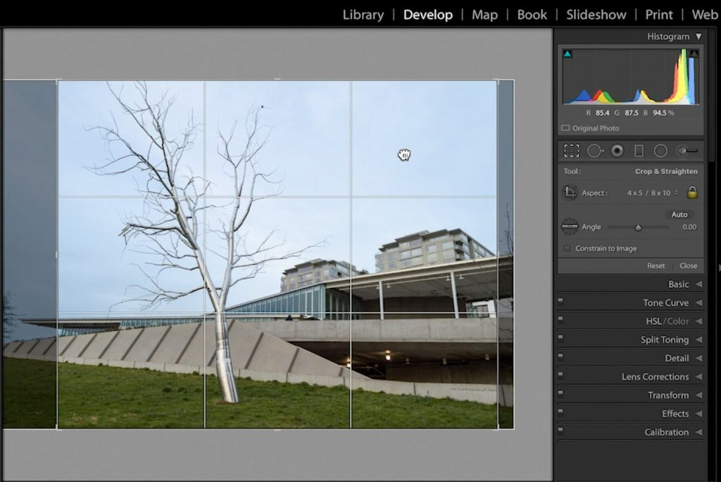 Lightroom-Cropping-and-Image-Resolution-05-reposition-crop