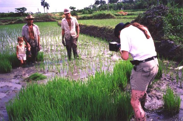 Jock working in the rice fields Pinar del Rio