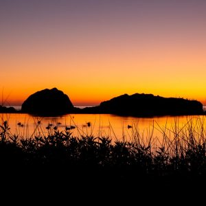 Advanced Night Photography Workshop 2020. Mill Valley. Marin County. Photo © Jed Hassell